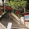 「金光稲荷神社」へのお詣りは、ある種、苦行である!?