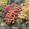 10月14日のツーリング 雨から紅葉ハント