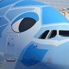 ANAエアバスA380「フライングホヌ」ホノルル初便に乗った【カウチシート搭乗記】