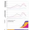 ブラジルの高齢者における不活化コロナワクチンの有効性