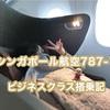 シンガポール航空787-10搭乗記〜機内編・座席から機内食まで写真多めレポ