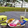 【桜情報2019】葛西臨海公園でお花見を楽しむ方法 / @葛西臨海公園