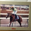 『競馬パネル:マヤノトップガン「1995年:第40回有馬記念」』