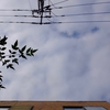 作曲工房 朝の天気 2018-11-08(木)晴れ