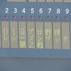2019プロ野球プレシーズンマッチ・埼玉西武対千葉ロッテ@春野(2019.02.24.)観戦記