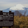 富士山が見たくて明神ヶ岳に登った