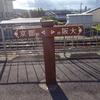京都と大阪の県境、離宮八幡宮の紅葉