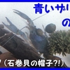 青いザリガニの苦難(7)