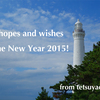 Best hopes and wishes for the New Year 2015!