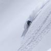 スキーバムというカルチャー