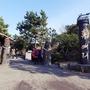 休愛里自然生活公園*椿祭り2017.11.24-1.14