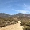 沢づたいのトレイル、ノース・エティワンダ | カリフォルニアのトレッキング