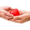 効果的な海外臓器移植のためのガイドライン