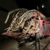 ニューヨーク 9/11メモリアルと9/11博物館 グラウンドゼロに行ってみた。