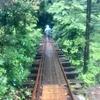 屋久島「縄文杉トレッキング」混雑と雨の 往路、8.5km のトロッコ道  手摺りの全くない橋が沢山〜