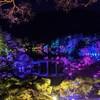 【一歩一景、光の森】チームラボ「栗林公園 光の祭」