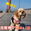 こぉーく!おんッ!!(Coke ON:コークオン)