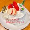 『トーニチさんの3大アレルゲンフリースポンジケーキ』