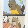 チベットスナギツネの砂岡さん「テレビアニメ」