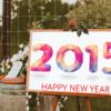 2015年の主な出来事まとめ〜日本経済新聞12月24日〜