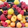 栄養に関する基本的な知識