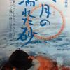 『石川セリ/パセリと野の花』と「八月の濡れた砂」