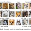 【ECCV2018 論文メモ#5】Multimodal Unsupervised Image-to-Image Translation