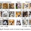 【ECCV2018 論文メモ#5】Multimodal Unsupervised Image-to-Image Translation
