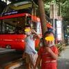 スカイバスで楽しむ夜の東京観光!(5歳、2歳子連れ)江戸っ子割 どきどき夜景観光 ジェットコースターみたいで迫力満点!