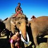 今年もスリンの象祭りに行ってきた。色々と出会いがあって、楽しい旅になった。