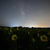 【天体撮影記 第140夜】 大分県 国東半島 長崎鼻のひまわり畑と天の川