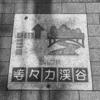 外国人にも受ける東京都心の穴場!等々力渓谷に行ってみた!