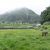 【Iターン】300万人都市・横浜から180人限界集落・須川に移住した夫婦の話