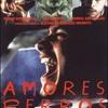 DVD / アモーレス・ペロス