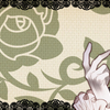 【薔薇に隠されしヴェリテ】感想・愛され慣れた「フェルゼン伯爵」