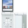 Panasonic 携帯電話 P-01H (docomo)