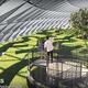 シンガポール・チャンギ空港の「Jewel」(ジュエル)。空港内に自然溢れる庭園・トレイル・スライダー・大迷路。