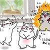 猫のための動画が大好評