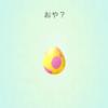 最近のたまご孵化状況(色違いあり!) 19/10/20