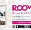 『楽天ROOM』で楽天ポイントを貯める方法!【裏ワザ、スマホ、アプリ、コレNG、コレ禁止、コレ歓迎】