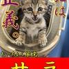 【猫ブログ】むーちょん家 総選挙 no.5 サラ
