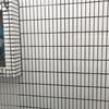 118th leg: 那覇-羽田 JAL906 & 那覇空港散策
