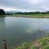 四号ため池(新潟県佐渡)