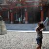 日枝神社の藤棚とミストの下でKindle読書