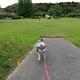 【ペットと遊ぶ】愛知県瀬戸市:定光寺公園 | 名古屋市内から1時間で行けるプチ避暑地です!!