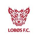 LOBØS LOGOS  〜 adlibler's diary