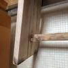 浴室の木製品につく黒カビ処理