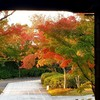 京都東山:青蓮院ライトアップと晩Boo
