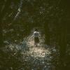 Amazonプライムビデオで観られるバッドエンドな鬱映画を10本紹介する