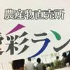 岸和田にある「道の駅 愛彩ランド」でテンション上がるの巻